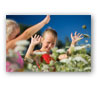 Photo sur Aluminium (Dibond®)